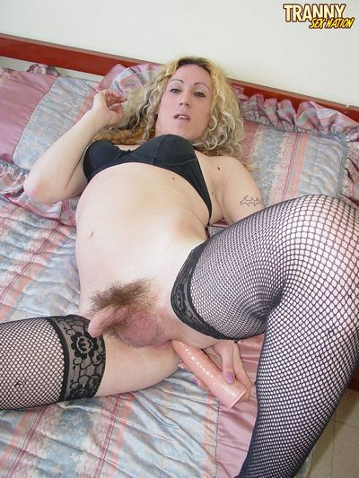 Tranny Sex Nation torrent
